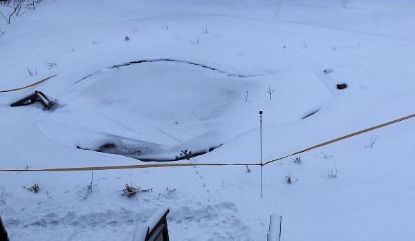 Пруд скрылся под снегом