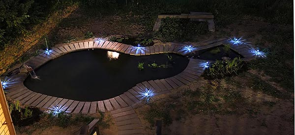 Ночной вид пруда. Вдоль берега установлены фонарики, заряжающиеся от солнца.